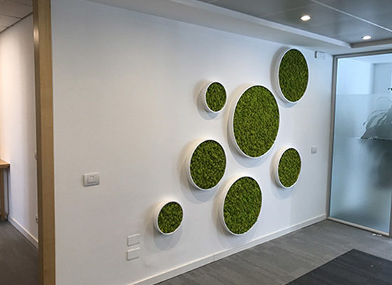 Design Ufficio Parete Corian Verde Verticale 2